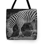 Zebra In Black And White Tote Bag