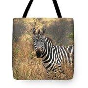 Zebra In Serengeti Tote Bag