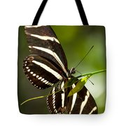 Zebra Longwing 3 Tote Bag
