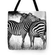 Zebra Love Tote Bag by Adam Romanowicz