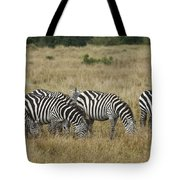 Zebra On Masai Mara Plains Tote Bag