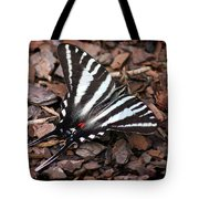 Zebra Swallowtail Butterfly Tote Bag
