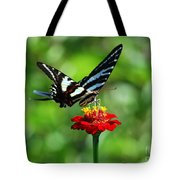 Zebra Swallowtail Butterfly On A Red Zinnia Tote Bag