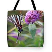 Zebra Swallowtail Butterfly On Butterfly Bush  Tote Bag