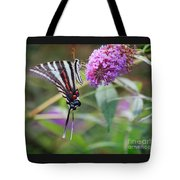Zebra Swallowtail Butterfly On Butterfly Bush  Tote Bag