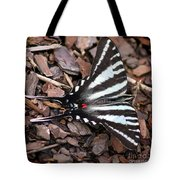 Zebra Swallowtail Butterfly Square Tote Bag