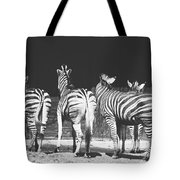 Zebras From Behind Tote Bag