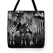 Zebras Tote Bag