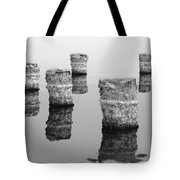 Zed Black And White Tote Bag