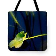 Zen Photography V Tote Bag