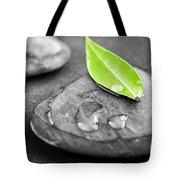 Zen Stones Tote Bag by Elena Elisseeva