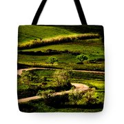 Zigzags Of A Path Tote Bag