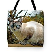 Zing The Cat In The Fall Tote Bag