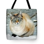 Zing The Cat On The Porch In The Snow Tote Bag