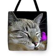 Zing The Cat Sleeping Tote Bag