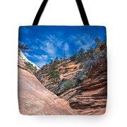 Zion Beauty Tote Bag