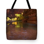 Zion Canyon Of The Virgin River Tote Bag