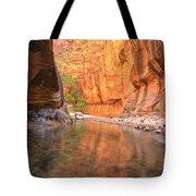 Zion Narrows Bend Tote Bag