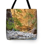 Zion Narrows Tote Bag