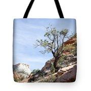 Zion National Park 1 Tote Bag