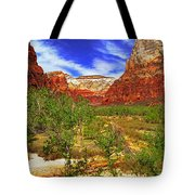 Zion Park Canyon Tote Bag