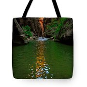 Zion Reflections - The Narrows At Zion National Park. Tote Bag