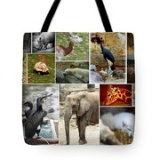 Zoo Collage Tote Bag