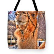 And To The Republic For Which It Stands    Tote Bag