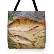 An Angler's Catch Of Coarse Fish Tote Bag