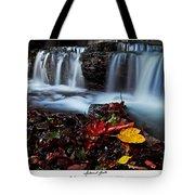 Autumnal Falls Tote Bag