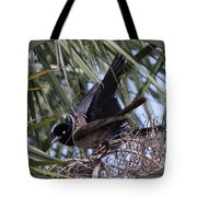Boat-tailed Grackle - Quiscalus Major Tote Bag