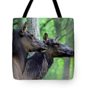 Elk In The Forest  Tote Bag