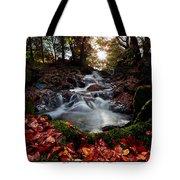Falls In The Fall Tote Bag