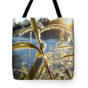 Frost On Willow At Sunrise Tote Bag