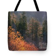 Great Smoky Mountains Morning Tote Bag