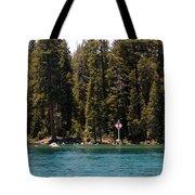 Lake Tahoe Sugar Pine Point Light Tote Bag