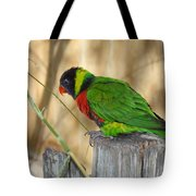 Lorikeet Parrot Sitting On A Fence Post  Tote Bag