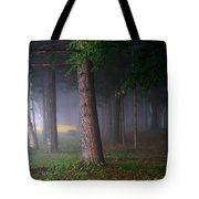 Morning Mist Tote Bag