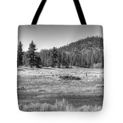 Prairie In South Lake Tahoe Tote Bag