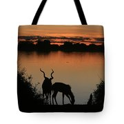 South African Sunset Tote Bag