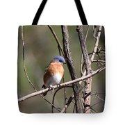 Sucarnoochee River - Bluebird Tote Bag