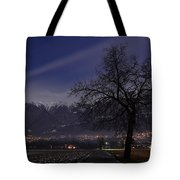Tree And Snow-capped Mountain Tote Bag