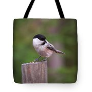 Willow Tit With Seeds Tote Bag