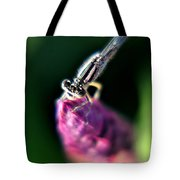 0001 Dragonfly On A Salvia Burgundy Candle Tote Bag