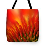 0001 Echinacea Pow Wow Sunrise Tote Bag