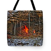 0004 Natural Elements Tote Bag
