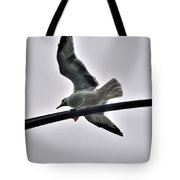 001 Gull To Out Do Wallenda Tote Bag