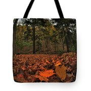 0013 Letchworth State Park Series Tote Bag