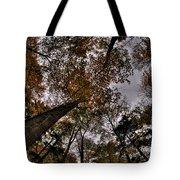 0014 Letchworth State Park Series Tote Bag