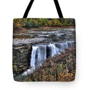 0016 Letchworth State Park Series  Tote Bag